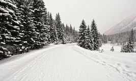 Mountains with snow in winter, Royalty Free Stock Image