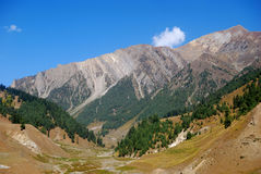 Mountains, Sonamarg, Kashmir, India Royalty Free Stock Photography