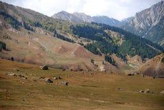 Mountains, Sonamarg, Kashmir, India Royalty Free Stock Photo