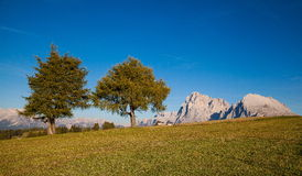 Mountains in South Tyrol. Seiser Alm and Rosengarten in South Tyrol Royalty Free Stock Photo