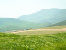 Mountains spring meadow. Stock Photography