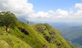 Mountains in Sri Lanka. Sri Lanka. A beautiful mountain landscape in the light of the morning sun on a summer day Royalty Free Stock Image