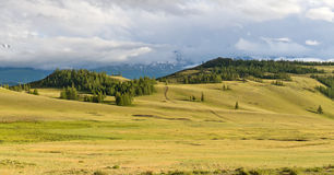 Mountains steppe panorama Stock Images