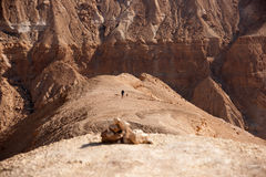 Mountains in stone desert nead Dead Sea Royalty Free Stock Images