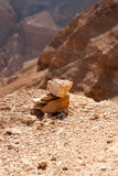 Mountains in stone desert nead Dead Sea Stock Photos