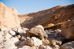 Mountains in stone desert nead Dead Sea Stock Images