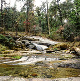 Mountains stony stream Stock Photo