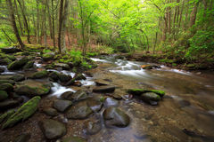 Mountains stream in spring color Royalty Free Stock Photography