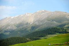Mountains in summer Royalty Free Stock Photography
