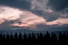 Mountains, sunset and silhouettes of trees. Carpathian nature. Mountains, sunset and silhouettes of trees Stock Photos