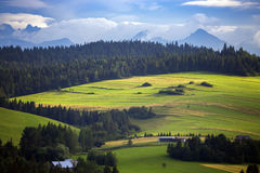 Mountains Tatry at the Zakopane. Beautiful mountain landscape at the Tatry. Zakopane, Poland royalty free stock photography