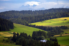 Mountains Tatry at the Zakopane. Beautiful mountain landscape at the Tatry. Zakopane, Poland stock image