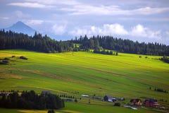 Mountains Tatry at the Zakopane stock photo