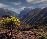 The Mountains of Tenerife Royalty Free Stock Photography