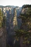 Mountains Tianzi Shan royalty free stock photo