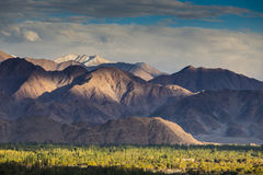 Mountains in the town of Leh Royalty Free Stock Images
