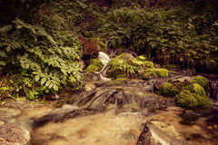 It is in the mountains of Trans-Ili Alatau. Weather changes frequently in the mountains of Trans-Ili Alatau spring Stock Photography