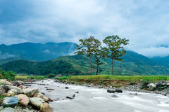 Mountains, tree. The mountains and trees at yenbai province- vietnam Stock Image