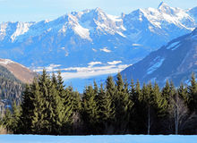 Mountains and trees in Austria Stock Photography