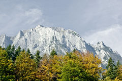 Mountains and trees in autumn light Stock Photo