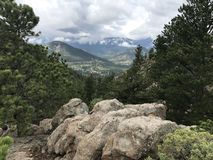 Rocky Mountain National Forest Royalty Free Stock Photography