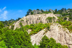 Mountains, trees and cloudy sky, Corsica, France Royalty Free Stock Photography