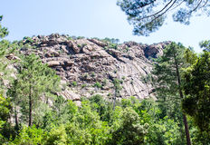 Mountains and trees in Corsica. 2014 Royalty Free Stock Photos