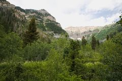 Mountains and Trees of Northern Utah Stock Images