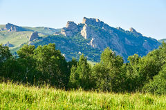 The mountains and trees Royalty Free Stock Photos