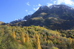 Mountains  and trees in Pyrenees, autumn, Valle de Tena Royalty Free Stock Photo