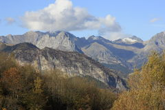 Mountains  and trees in Pyrenees, autumn, Valle de Tena Stock Images