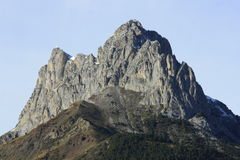 Mountains and trees in Pyrenees, Foratata, Sallent de gállego Royalty Free Stock Image