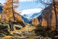 Mountains With Trees Under Blue Sky and White Clouds Stock Photos