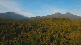 Mountains with tropical forest. Camiguin island Philippines. Mountains with rainforest covered with green vegetation and trees on the tropical island, landscape stock footage
