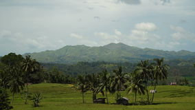Mountains with tropical forest. Philippines Bohol island. stock video