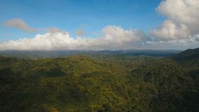Mountains with tropical forest. Philippines Catanduanes island. Aerial view: Mountains with rainforest covered with green vegetation and trees on the tropical stock video