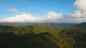 Mountains with tropical forest. Philippines Catanduanes island. Aerial view: Mountains with rainforest covered with green vegetation and trees on the tropical stock video footage