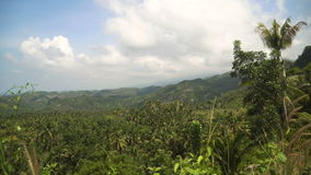 Mountains with tropical forest. Philippines Cebu island. stock video footage