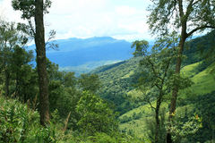 Mountains and tropical rain forest Royalty Free Stock Image