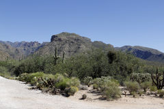 Mountains in Tucson, Arizona Stock Photos