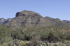 Mountains in Tucson, Arizona Royalty Free Stock Photos
