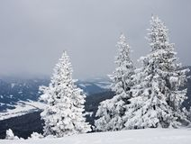 Mountains under snow.  Austria Stock Photos
