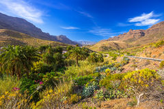 Mountains and valleys of Gran Canaria island Royalty Free Stock Image
