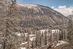 Mountains, Valleys, Streams, and Trees Royalty Free Stock Images