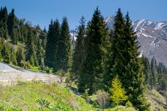 Mountains view. At summer near Almaty, Kazakhstan Royalty Free Stock Image