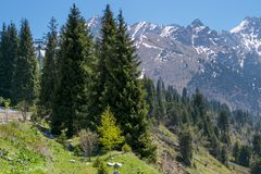 Mountains view. At summer near Almaty, Kazakhstan Stock Images