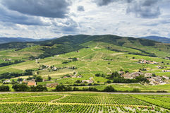 Mountains and vineyards of Beaujolais, France Stock Photography