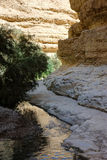 Mountains and water in the Ein Gedi nature reserve Stock Photos