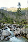 Mountains and water. Picture of rivers flowing below the peaks of the mountains stock image
