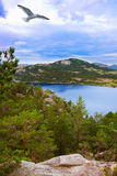 Mountains on the way to the Cliff Preikestolen in fjord Lysefjor Royalty Free Stock Images